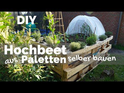 Hochbeet aus Paletten selber bauen | Anlegen - Befüllen - Bepflanzen | Garten DIY Anleitung