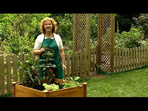 Hochbeete richtig befüllen und bepflanzen - Der Grüne Tipp